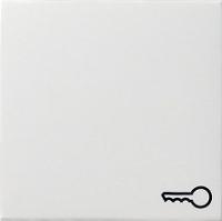 GIRA 028727 Wippe Symbol Schlüssel Sys55 rws matt