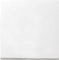 GIRA 029627 Wippe für Wippschalter und Taster - reinweiß matt