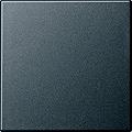 GIRA 029628 Wippe für Wippschalter und Taster - anthrazit