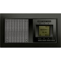 Siemens 5TC1062 Delta Miro Unterputz Radio carbonmetallic