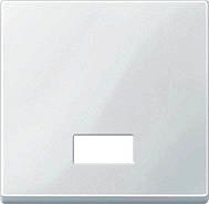 Merten 433819 Wippe mit rechteckigem Symbolfenster polarweiss