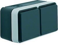 W.1 SSD 2fach waagrecht grau/lichtgrau mattBERKER 47843515