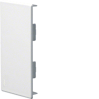 Endplatte,PVC,BR70130,reinwei�TEHALIT M55739010
